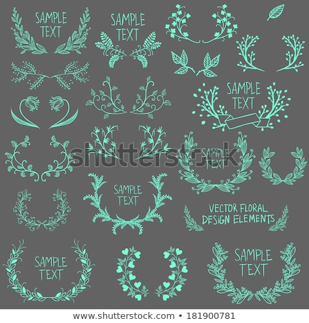 Symmetrical ornament design elements Stock photo © adrian_n