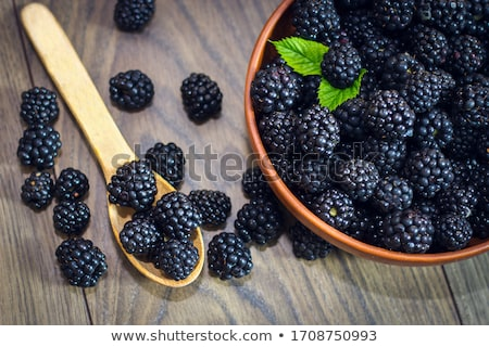 Photo many blackberries with leaves isolated white  Stock photo © dla4