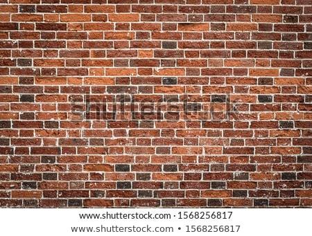 Textur Backsteinmauer abstrakten Gebäude Bau Stock foto © OleksandrO