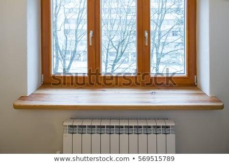 rot · venster · full · frame · tonen · detail · oude - stockfoto © ldambies