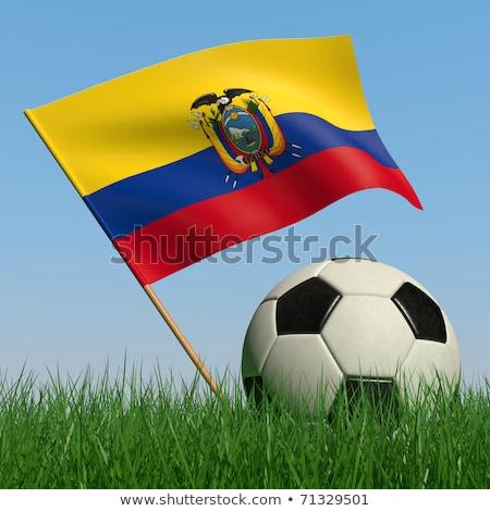 Voetbal Ecuador kleuren gras voetbal groene Stockfoto © wavebreak_media