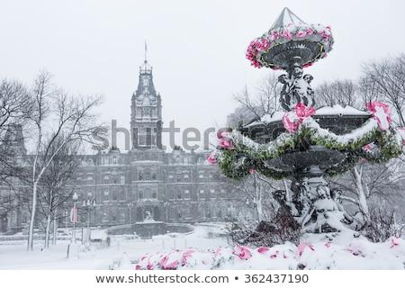 Fontein conventie centrum winter gebouw sneeuw Stockfoto © Lopolo