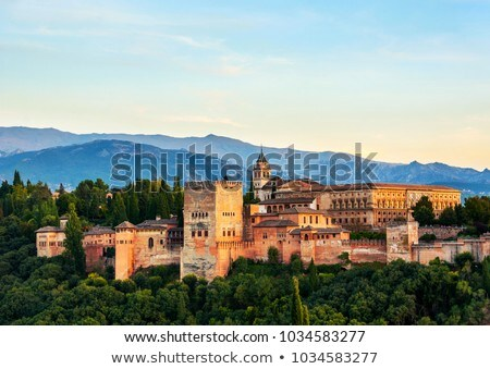 Aerial View Of The Fortress Alhambra In Granada Spain Stock photo © diego_cervo