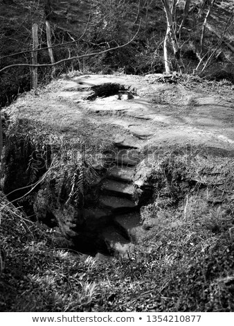 staircase hewn in the rock gorges  Stock photo © OleksandrO