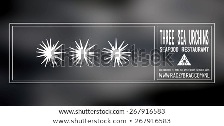 Sea urchin food label on white Stock photo © bluering