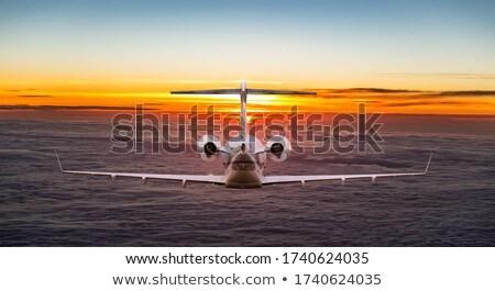A jetplane Stock photo © bluering