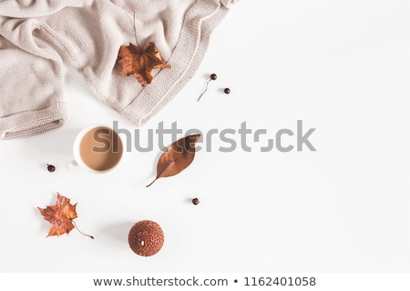 Overhead of sweater with autumn leaves Stock photo © wavebreak_media