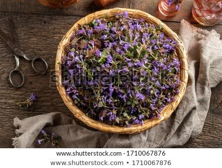 Fresche basket top view fioritura fiore Foto d'archivio © madeleine_steinbach