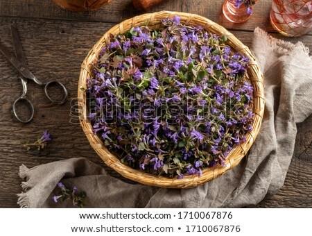 fraîches · panier · haut · vue · floraison · fleur - photo stock © madeleine_steinbach
