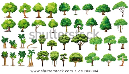 vector set of trees cartoon Stock photo © olllikeballoon