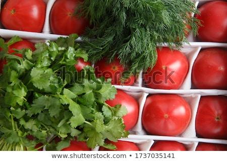ショット 新鮮な ジューシー 赤 トマト ストックフォト © vkstudio