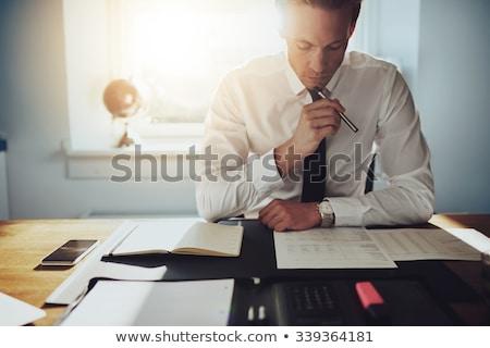 Zakenman advocaat boekhouder werken financiële investering Stockfoto © Freedomz