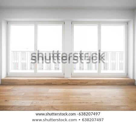 Two windows Stock photo © Hofmeester