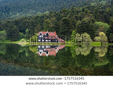 House reflection Stock photo © ldambies