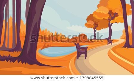 molhado · chuvoso · outono · dia · folhas · cair - foto stock © kotenko