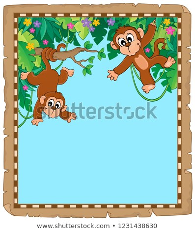 Pergamino dos monos papel primavera naturaleza Foto stock © clairev