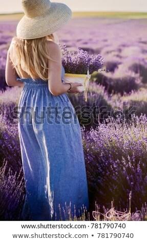 美人 麦わら帽子 バイオレット ラベンダー畑 美しい 若い女性 ストックフォト © dashapetrenko