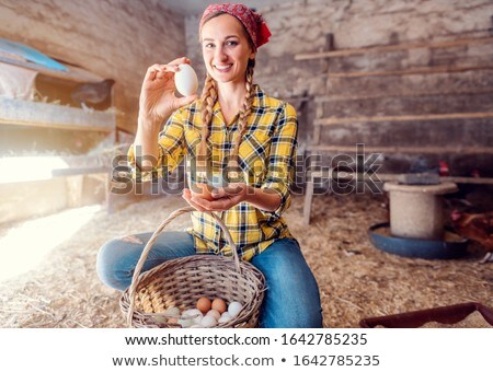 Famer woman collecting eggs from her hens in basket Stock photo © Kzenon