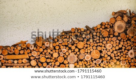 Pile of chopped lumber near house in Germany  Stock photo © kyolshin