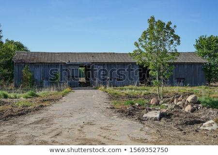 Stock fotó: épület · monitor · elektronika
