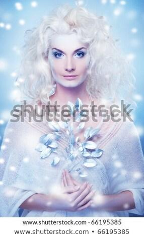 Foto stock: Neve · rainha · magia · galho · menina · cara