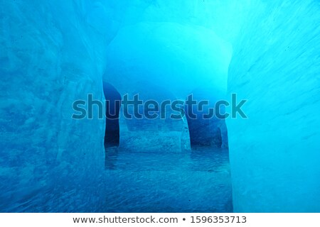 mont blanc massif and mer de glace glacier stock photo © antonio-s