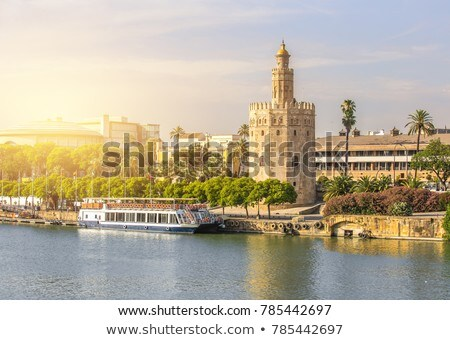 Panorama of Seville with Golden Tower   Stock photo © benkrut
