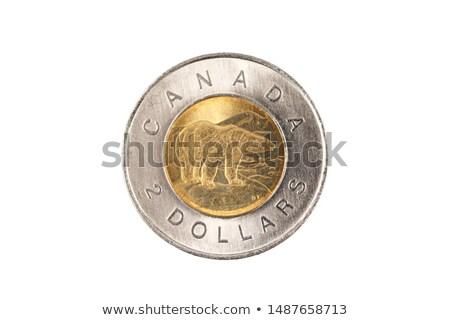 Macro shot dollaro moneta finanziare banca Foto d'archivio © Zerbor