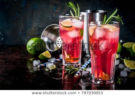 Koktél jég citrom rozmaring gyógynövény alkohol Stock fotó © artsvitlyna