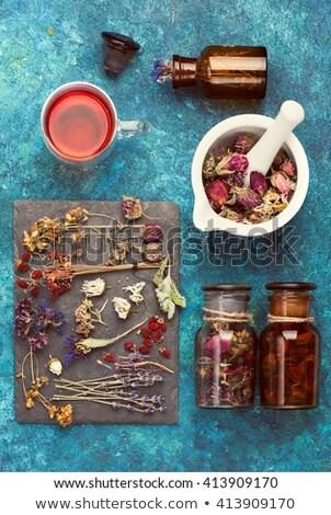 Hypericum flowers tea Stock photo © AGfoto