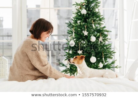 Sideways shot of young brunette woman in loose brown sweater holds paws of dog, sit together at comf Stock photo © vkstudio