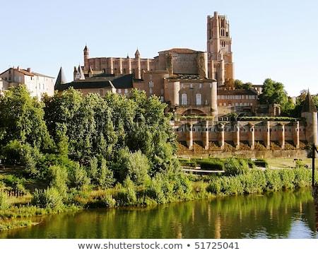 Kathedraal Frankrijk basiliek belangrijk katholiek Stockfoto © borisb17