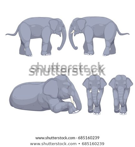 Set of wild animals laying down Stock photo © bluering