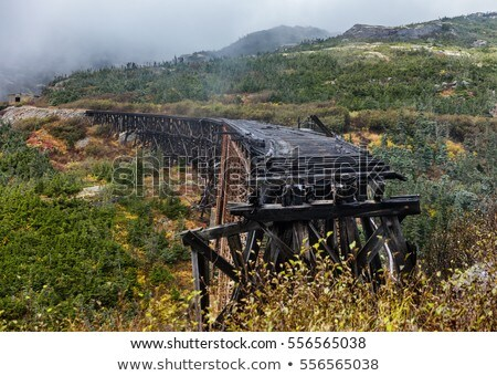 古い 鋼 橋 白 合格 ルート ストックフォト © Maridav