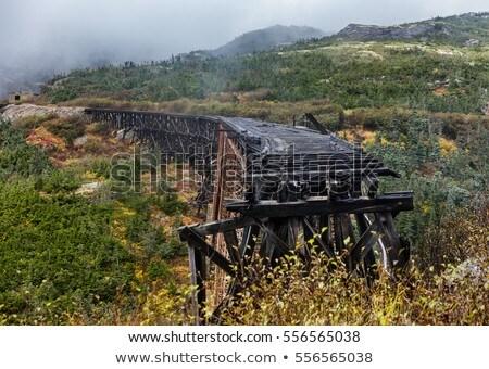 Old steel bridge on White Pass and Yukon Route Railway train ride, Skagway, Alaska, USA. Constructed Stock photo © Maridav