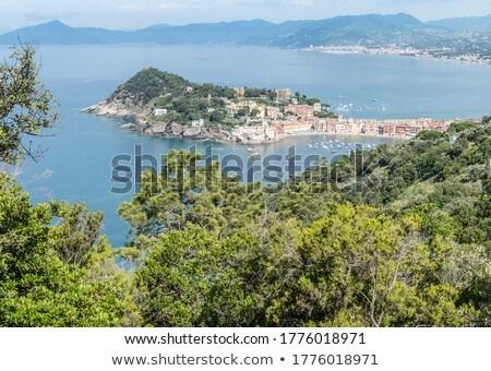 Sestri Levante and Tigullio Gulf Stock photo © Antonio-S