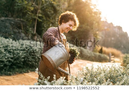 Woman tending to a plant Stock photo © photography33