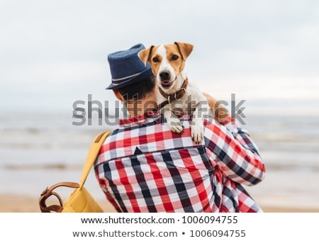 dog loves to be hugged by tourist Stock photo © meinzahn