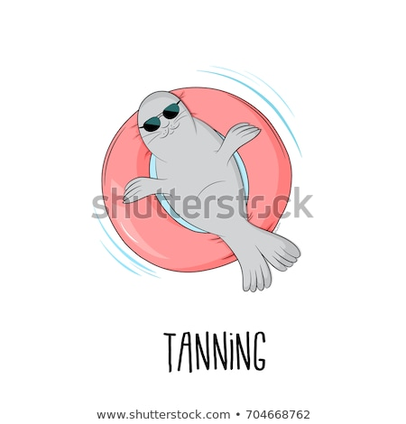 Seals Rest Time Stock photo © rghenry