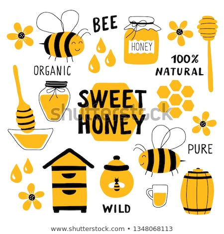 doodle vector set of apiary Stock photo © netkov1