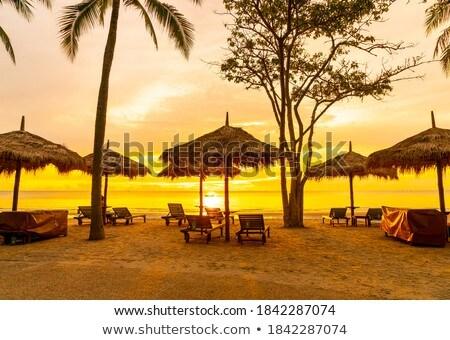 Foto stock: Cadeiras · de · praia · manhã · luz · praia · mar · báltico · água