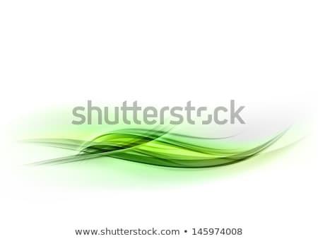 clean vertical green wave elegant background Stock photo © SArts