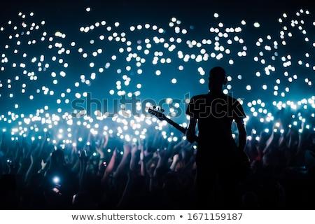 Guitarrista realizar multitud discoteca vista Foto stock © wavebreak_media