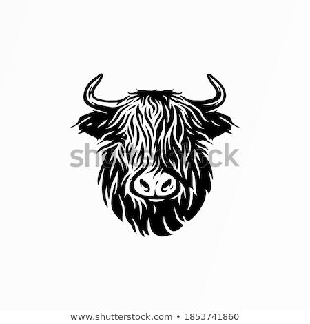 Highlander Mascot Stock photo © patrimonio