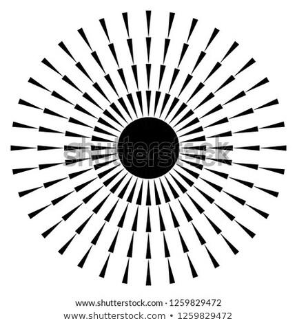 fekete · koncentrikus · alkotóelem · illusztráció · absztrakt · csillag - stock fotó © Blue_daemon