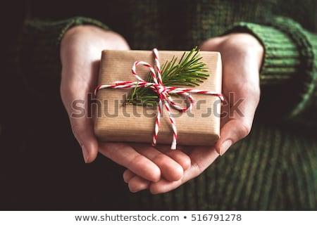 Hände halten Weihnachten Geschenk Stock foto © dolgachov