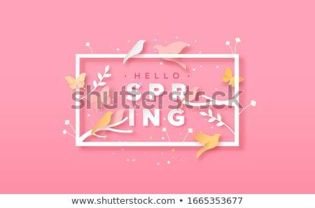 Hello tavasz virágmintás kártya papír vág Stock fotó © cienpies