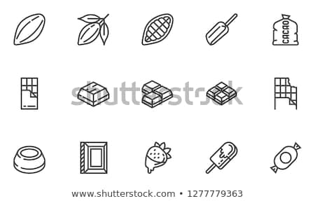 cocoa beans icon vector outline illustration Stock photo © pikepicture