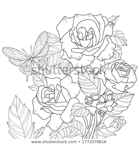 Coloring book roses and butterflies Stock photo © clairev