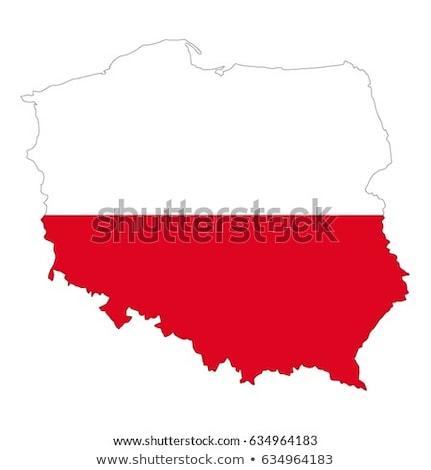 Polska banderą biały projektu farby vintage Zdjęcia stock © butenkow